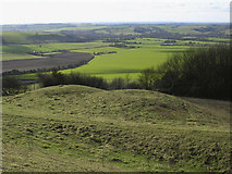 SU6320 : Double round barrow on Old Winchester Hill, looking down into the Meon Valley by Jim Champion