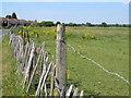 TQ0279 : Field off Market Lane, Langley by Darren Smith