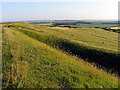 SU2986 : The Western Edge of Uffington Castle Fort by Pam Brophy