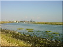 TQ8475 : Stoke Saltings by Penny Mayes