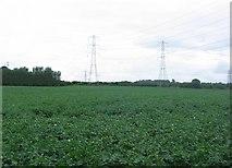 NT3168 : Potato fields , Sheriffhall. by Richard Webb