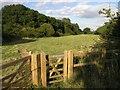 SP6615 : A Field near Brill by Hywel Williams