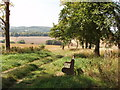 SU7390 : Bench with view of Pishill and Stonor by David Hawgood