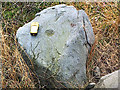 SE1142 : Cup marked rock, Bingley Moor (detail) by David Spencer