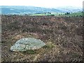 SE1143 : Cup marked rock, Bingley Moor by David Spencer