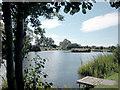 SJ4470 : Lake by Dennis Turner