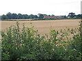 TA0146 : Bryan Mills Farm by Stephen Horncastle