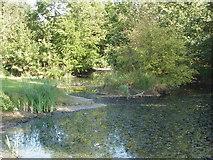 SP7909 : Moat at Moreton Farm, near Ford by David Hawgood