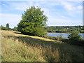 SU9497 : The Lake, Shardeloes Park, Nr Amersham by Pip Rolls