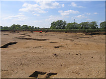 TL0850 : Archaeological dig east of Bedford by Rodney Burton