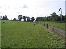 SK3900 : Ambion Hill, Bosworth Battlefield, Shenton, Leics by Rodney Burton