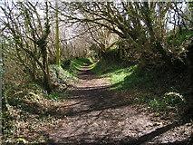 SX0257 : Footpath near Rescorla by bernard may