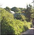 SW8771 : Lewidden, near Penrose by David Hawgood