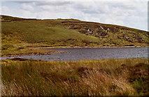 C5339 : Lough Fad by Corinna Schleiffer