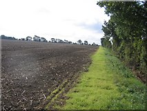 TL2243 : Farmland east of Biggleswade, Beds by Rodney Burton