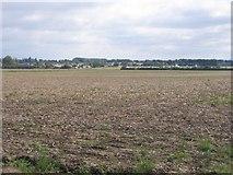 TL1638 : Farmland, Clifton, Beds by Rodney Burton