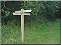 SX1495 : Footpath cross roads. by Clive Perrin