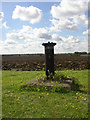 TL6451 : Trig Point...less by mike