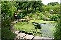 SW5828 : The pond by Ken Ballinger