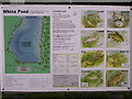 NY5530 : Whins Pond List of Fish by Chris Upson