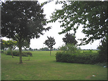 TQ6982 : Stanford-le-Hope Recreation Grounds by John Winfield