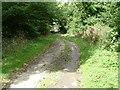 SE8448 : Bratt Wood by Ian Lavender