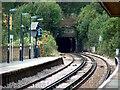 TQ3570 : Railway Tunnel under Sydenham Hill by Noel Foster