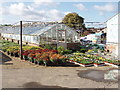 TQ0486 : Plant nursery in Denham by David Hawgood