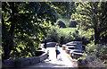 SX0963 : Respryn Bridge on the River Fowey, Cornwall by Crispin Purdye