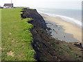 TA2539 : Cliffs at Mount Pleasant,  Aldbrough 2004 by Crispin Purdye