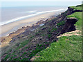 TA2539 : Cliff erosion, near Mount Pleasant 2004 by Crispin Purdye
