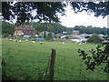 TQ4557 : Meadow near Scott's Lodge by Pip Rolls