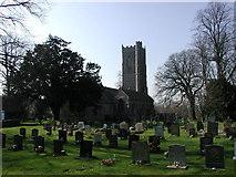 ST5290 : Mathern (Merthyr Tewdrig) Church of St Tewdric by ChurchCrawler