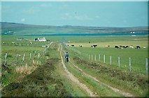 HY3607 : Track near the Loch of Kirbister, Orphir, Orkney by Humphrey Bolton
