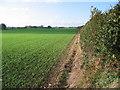 TA2235 : Farmlend SE of Flinton by Stephen Horncastle