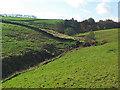 SE0139 : Valley of Nook Beck by David Spencer