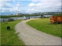 SJ4979 : Frodsham Marsh Farm and Ship Canal by David Crocker