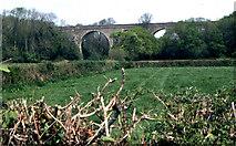 SS2202 : Former railway viaduct, near Trelay by Crispin Purdye