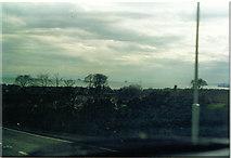 NT3496 : Wemyss. by Ron Hann