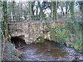 SW4330 : Skimmel Bridge by Carl Weaver