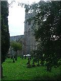 SX5356 : St Mary's Church, Plympton by Gwyn Jones