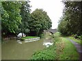 ST9561 : Kennet & Avon Canal, Martinslade Bridge by Michel Van den Berghe