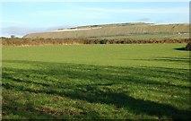 SW9553 : Pasture land near Carloggas by Tony Atkin