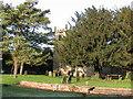 SK9869 : All Saints church, Canwick, 100m west of Canwick Hall by Ian Carrington