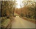 SN0422 : Step-aside Bridge by Jim Goldsmith
