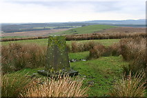 NX2879 : Cowar Mains Hill trig by Iain Macaulay