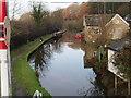 SJ9169 : Macclesfield Canal  Fools Nook by Ian Warburton