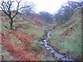 NY0920 : Wisenholme Beck. by John Holmes