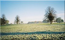 SU7989 : Frosty farmland at Parmoor by Andrew Smith