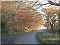 SP9007 : Buckland Wood by Leyland's Farm by Rob Farrow
